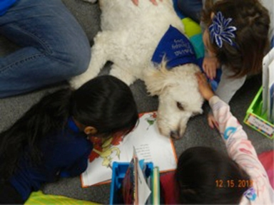 Students in Jodi Kolbe's first grade class read to Koira, a licensed therapy dog.